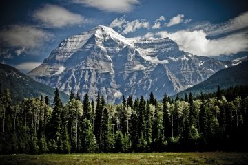 image of mount robson in the canadian rockies with trees in the foreground